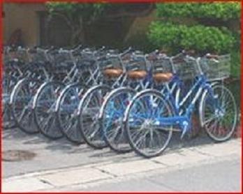 350px自転車置き場.jpg